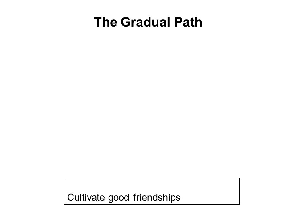 Get yourself on the right path Cultivate good friendships Follow a code of discipline Avoid wrongful occupations Help others Develop the 10 Meritorious Deeds Taking Refuge Be in touch with the Dhamma Seriously practice the 8 Fold Path Breaking the 10 Fetters The Gradual Path