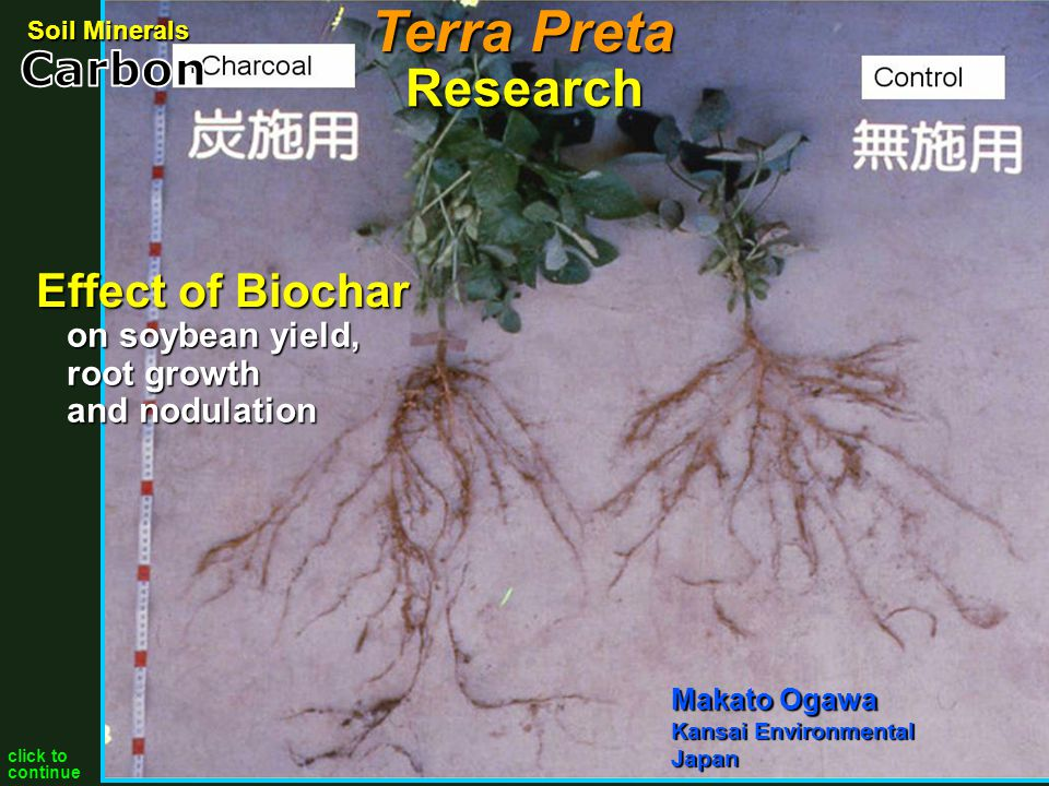 Biochar added to Acacis manguim manguim seedlings at age 6 months, height & diameter significantly increased Siregar (2004), Forest & Nature Conservation Research & Development Center, Indonesia 0% 10% 15% 20% Research Soil Minerals Terra Preta click to continue