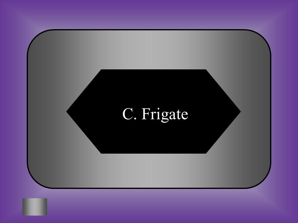 C. Frigate