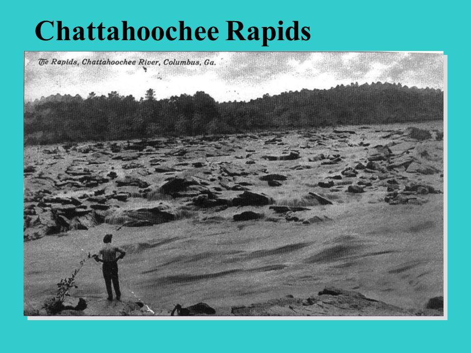 Chattahoochee Rapids