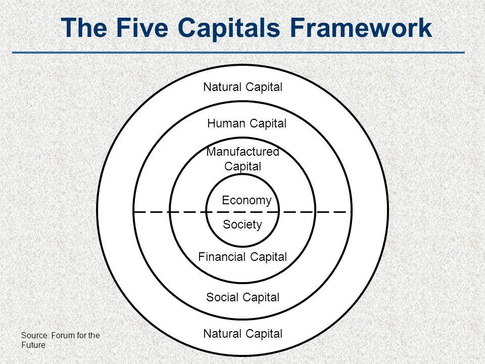 Natural Capital Financial Capital Manufactured Capital Human Capital Economy Society Natural Capital Social Capital The Five Capitals Framework Source