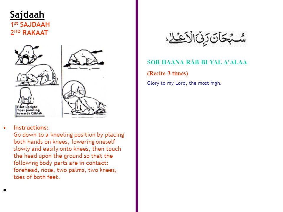Sajdaah 1 st SAJDAAH 2 ND RAKAAT Instructions: Go down to a kneeling position by placing both hands on knees, lowering oneself slowly and easily onto knees, then touch the head upon the ground so that the following body parts are in contact: forehead, nose, two palms, two knees, toes of both feet.