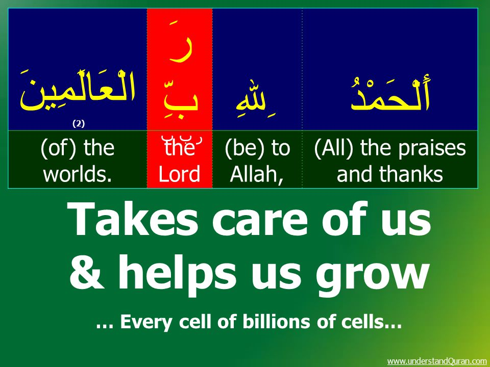 www.understandQuran.com أَلْحَمْدُ ِﷲِ رَ بِّ الْعَالَمِينَ (2) (All) the praises and thanks (be) to Allah, the Lord (of) the worlds. ر ب ب Takes care