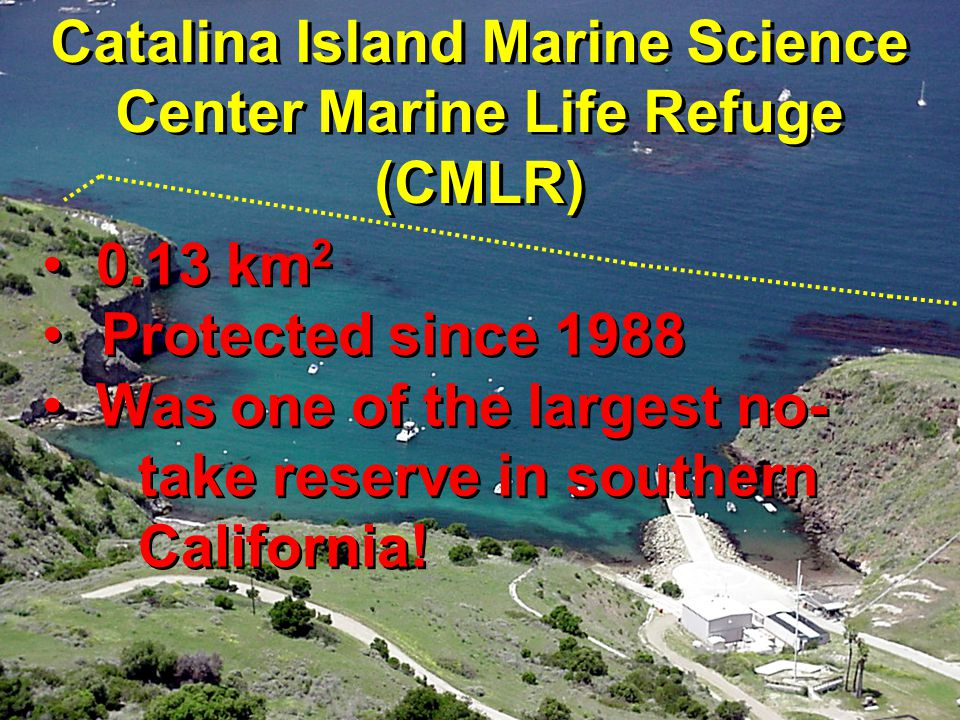 Catalina Island Marine Science Center Marine Life Refuge (CMLR) 0.13 km 2 Protected since 1988 Was one of the largest no- take reserve in southern California.