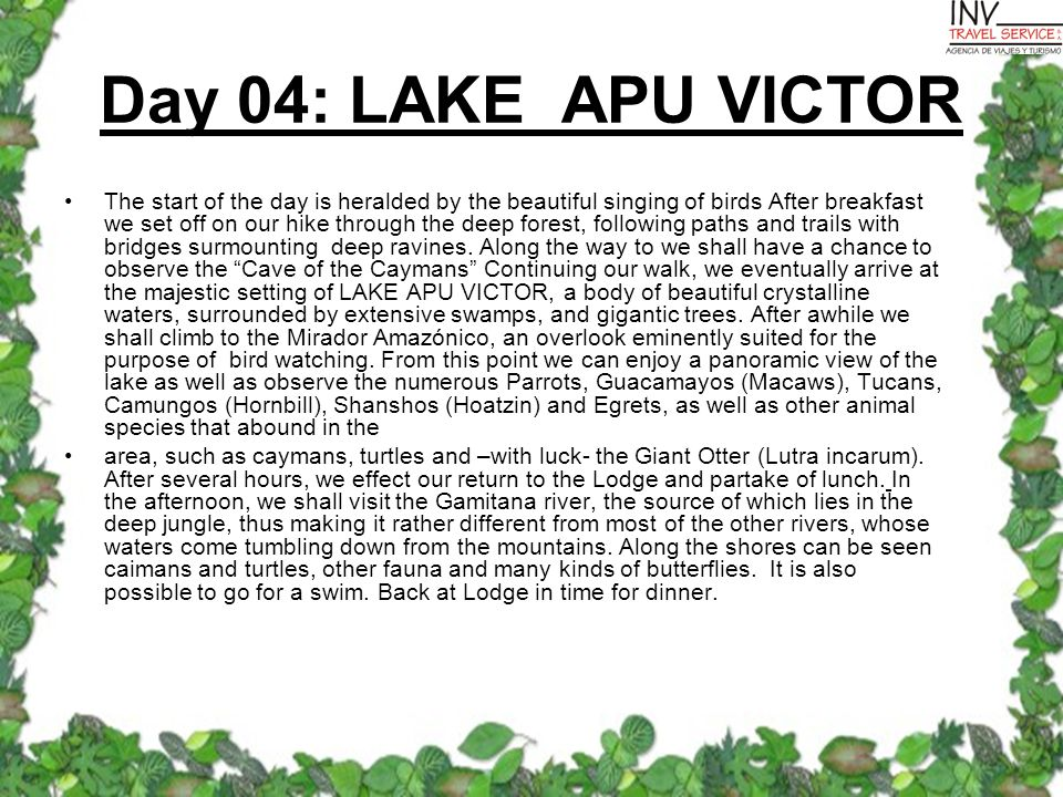 Day 04: LAKE APU VICTOR The start of the day is heralded by the beautiful singing of birds After breakfast we set off on our hike through the deep forest, following paths and trails with bridges surmounting deep ravines.
