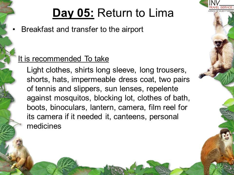 Day 05: Return to Lima Breakfast and transfer to the airport It is recommended To take Light clothes, shirts long sleeve, long trousers, shorts, hats, impermeable dress coat, two pairs of tennis and slippers, sun lenses, repelente against mosquitos, blocking lot, clothes of bath, boots, binoculars, lantern, camera, film reel for its camera if it needed it, canteens, personal medicines