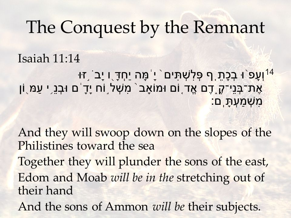 The Conquest by the Remnant Isaiah 11:14 14 וְעָפ ֨ וּ בְכָתֵ ֤ ף פְּלִשְׁתִּים ֙ יָ ֔ מָּה יַחְדָּ ֖ ו יָבֹ ֣ זּוּ אֶת־בְּנֵי־קֶ ֑ דֶם אֱד ֤ וֹם וּמוֹאָב ֙ מִשְׁל ֣ וֹח יָדָ ֔ ם וּבְנֵ ֥ י עַמּ ֖ וֹן מִשְׁמַעְתָּֽם׃ And they will swoop down on the slopes of the Philistines toward the sea Together they will plunder the sons of the east, Edom and Moab will be in the stretching out of their hand And the sons of Ammon will be their subjects.