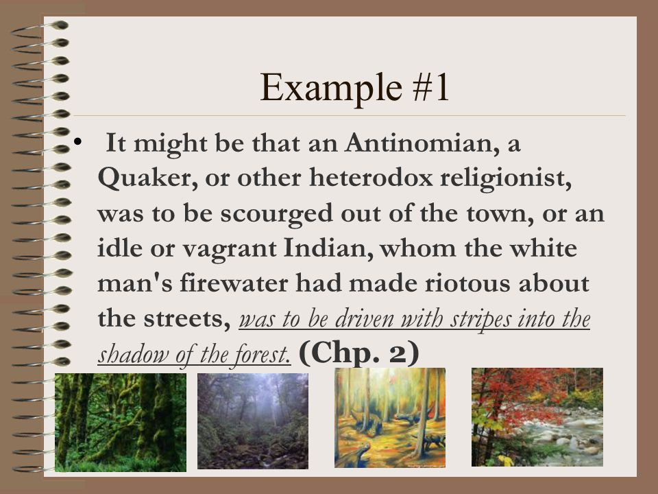 Example #1 It might be that an Antinomian, a Quaker, or other heterodox religionist, was to be scourged out of the town, or an idle or vagrant Indian,
