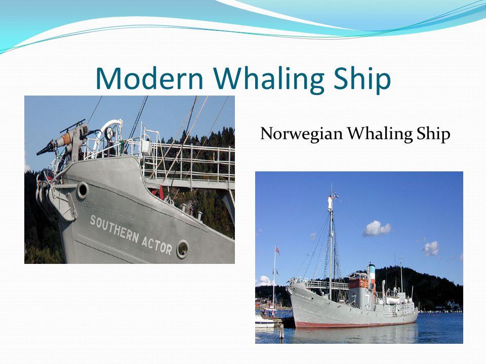 Modern Whaling Ship Norwegian Whaling Ship
