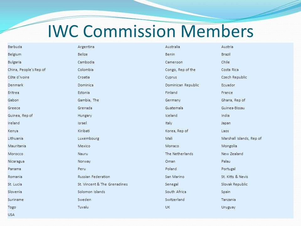 IWC Problems Any government can object to any decision which it considers to seriously affect its national interest The governments that object are not then bound by that particular decision This mechanism has been strongly criticized as rendering the Commission toothless A government is able to withdraw from the convention at any time