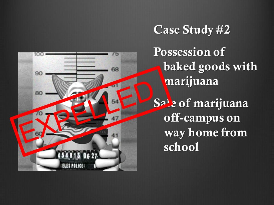 Case Study #2 Possession of baked goods with marijuana Sale of marijuana off-campus on way home from school E X P E L L E D