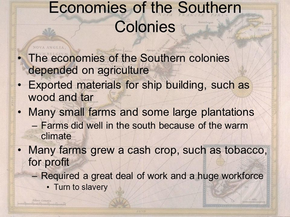 Economies of the Southern Colonies The economies of the Southern colonies depended on agriculture Exported materials for ship building, such as wood and tar Many small farms and some large plantations –Farms did well in the south because of the warm climate Many farms grew a cash crop, such as tobacco, for profit –Required a great deal of work and a huge workforce Turn to slavery