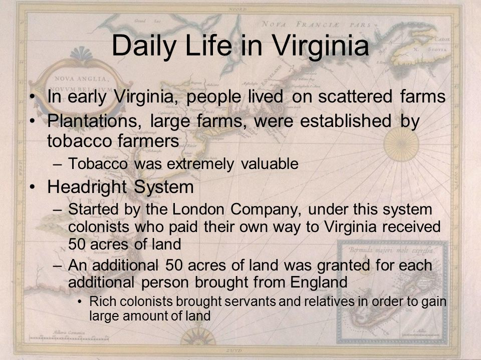 Daily Life in Virginia In early Virginia, people lived on scattered farms Plantations, large farms, were established by tobacco farmers –Tobacco was extremely valuable Headright System –Started by the London Company, under this system colonists who paid their own way to Virginia received 50 acres of land –An additional 50 acres of land was granted for each additional person brought from England Rich colonists brought servants and relatives in order to gain large amount of land