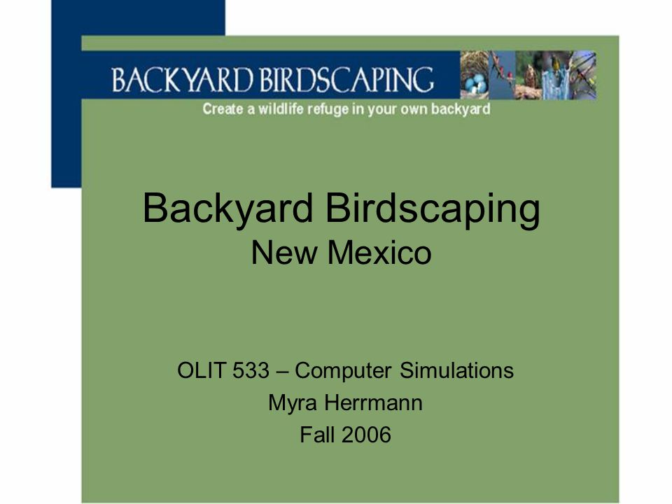 Backyard Birdscaping New Mexico OLIT 533 – Computer Simulations Myra Herrmann Fall 2006