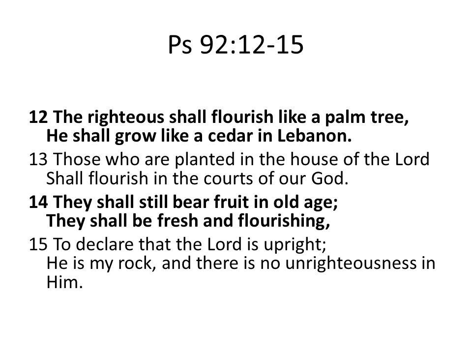 Ps 92:12-15 12 The righteous shall flourish like a palm tree, He shall grow like a cedar in Lebanon.