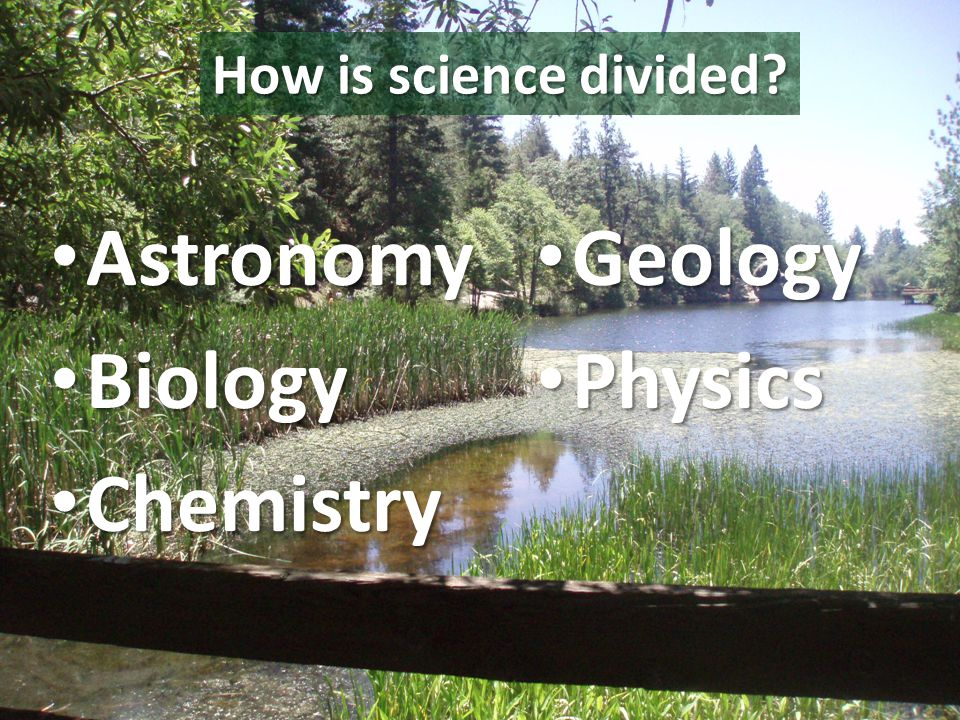 How is science divided.