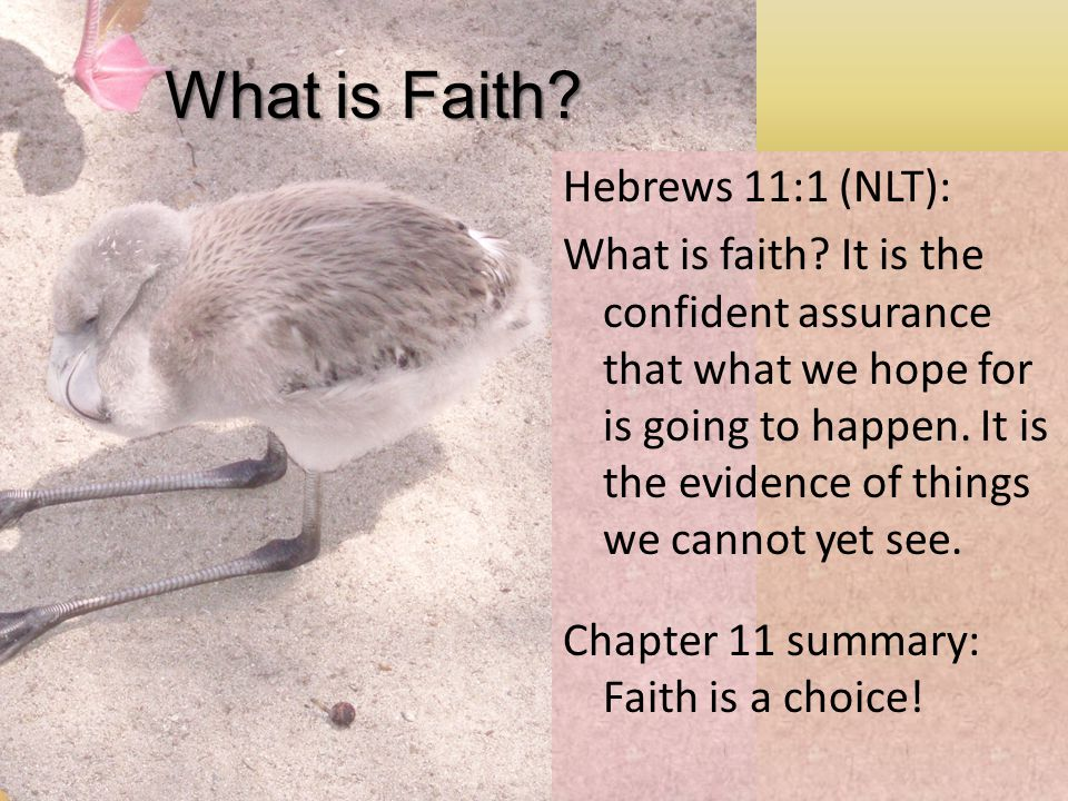 What is Faith. Hebrews 11:1 (NLT): What is faith.