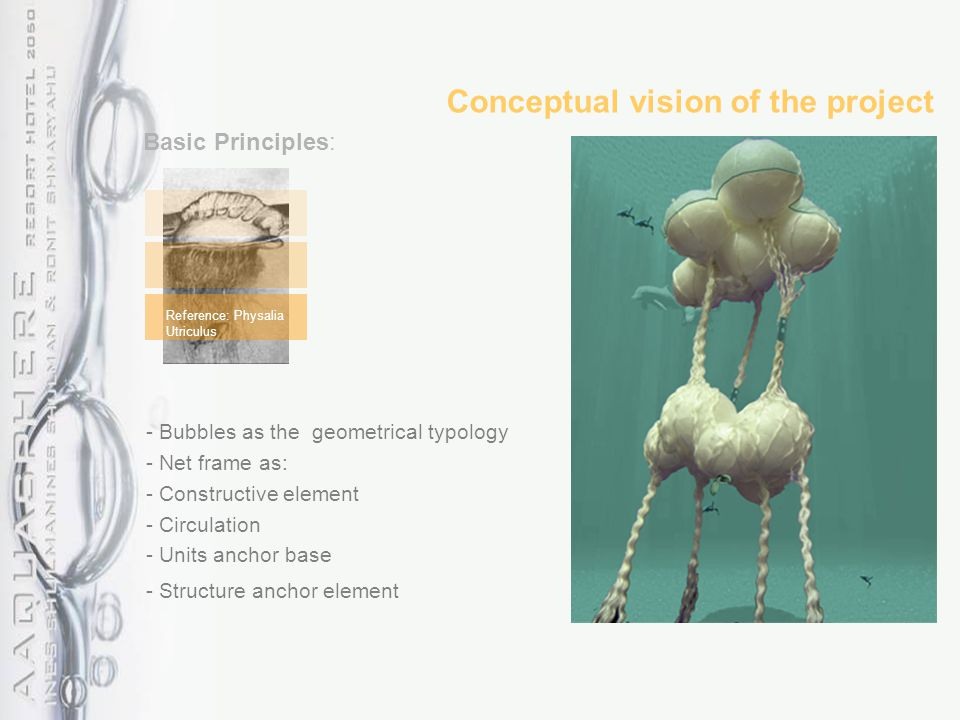 Conceptual vision of the project - Bubbles as the geometrical typology - Net frame as: - Constructive element - Circulation - Units anchor base - Stru