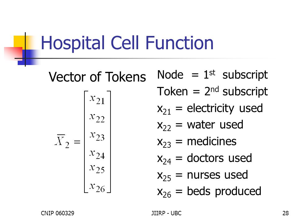 CNIP 060329JIIRP - UBC28 Hospital Cell Function Node = 1 st subscript Token = 2 nd subscript x 21 = electricity used x 22 = water used x 23 = medicines x 24 = doctors used x 25 = nurses used x 26 = beds produced Vector of Tokens