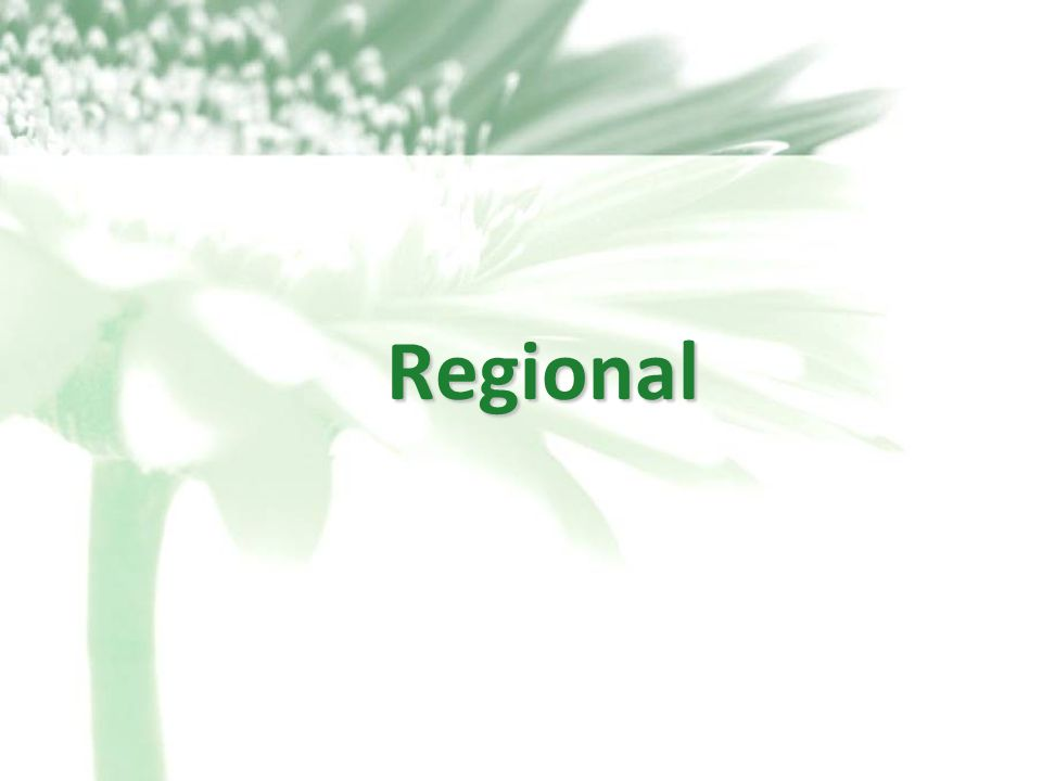 15 Regional