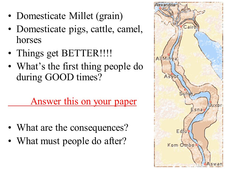 Domesticate Millet (grain) Domesticate pigs, cattle, camel, horses Things get BETTER!!!.