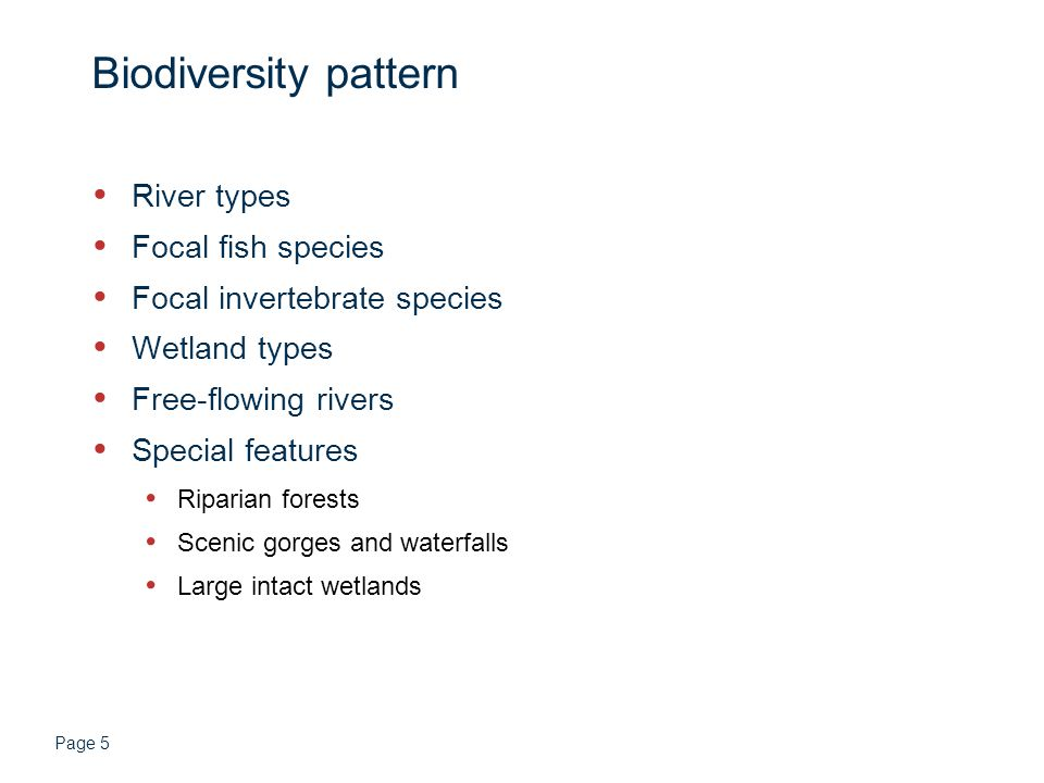 Page 5 Biodiversity pattern River types Focal fish species Focal invertebrate species Wetland types Free-flowing rivers Special features Riparian forests Scenic gorges and waterfalls Large intact wetlands
