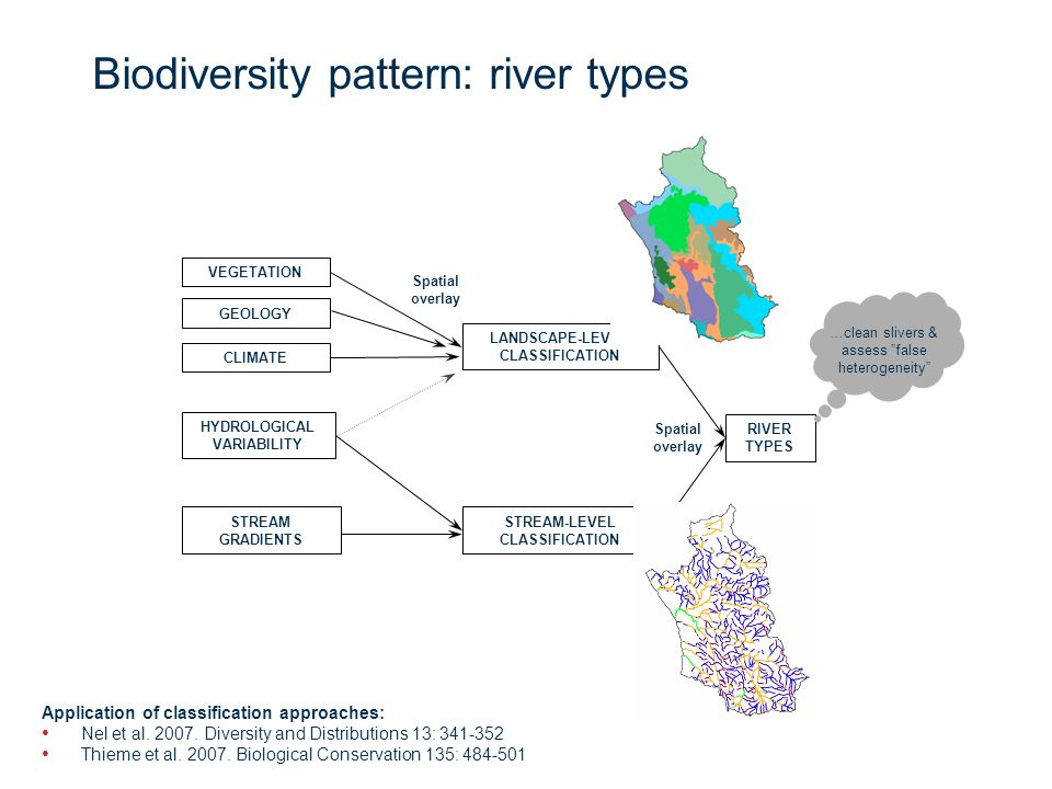 Page 8 Biodiversity pattern: River types Hydrological variation Low road: model water balance using mean annual precipitation and evapotranspiration; provides sub-catchment level hydrology Middle road: model using hydrological gauge data; generally only available for main rivers High road: use topocadastral data which ID's perenniality based on seasonal surveys Stream gradients Low road: use elevation thresholds to ID high-elevation, mid-elevation and lowland streams High road: Model stream slope based on rivers and DEM GIS layers & assign geomorphological zonation: Lumped geomorphological zone Rowntree and Wadeson (1999) zones Source zoneSource zones Mountain streamMountain headwater & mountain streams Upper foothillsTransitional zones and upper foothills Lower foothills Lowland river