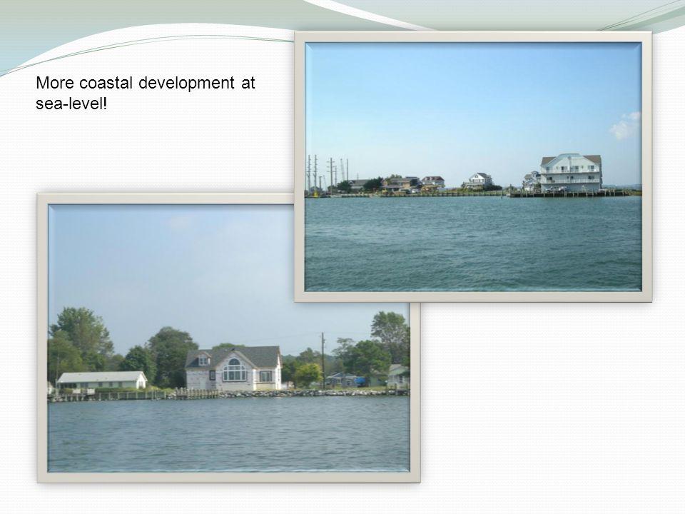 More coastal development at sea-level!