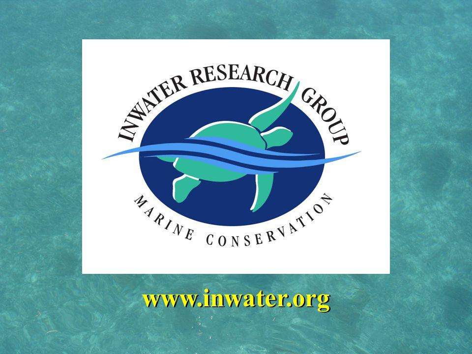 www.inwater.org