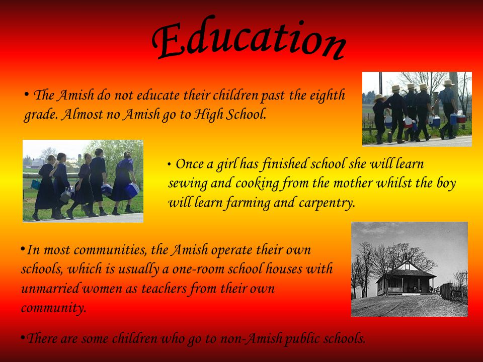 The Amish do not educate their children past the eighth grade.