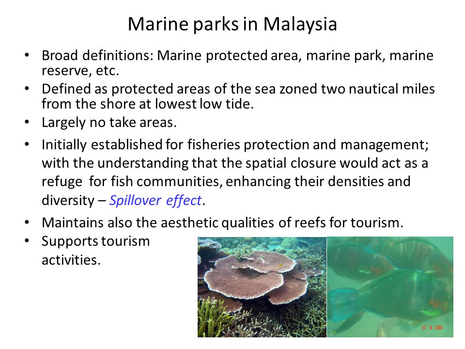 Marine parks in Malaysia Broad definitions: Marine protected area, marine park, marine reserve, etc. Defined as protected areas of the sea zoned two n