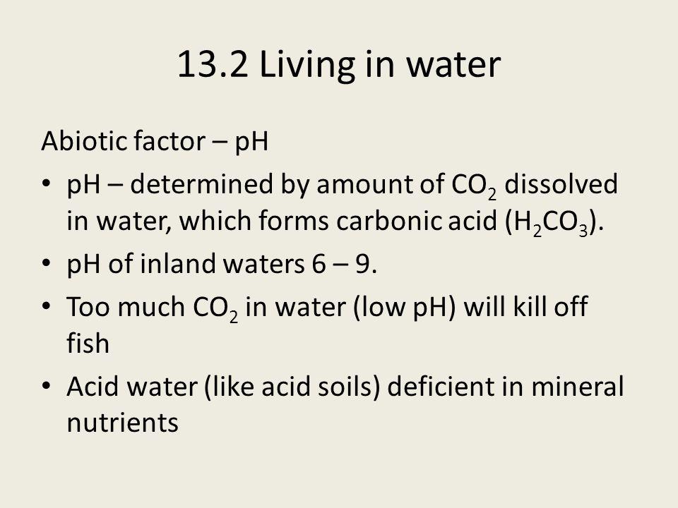 13.2 Living in water Subtidal Zone Least stressful zone e.g.