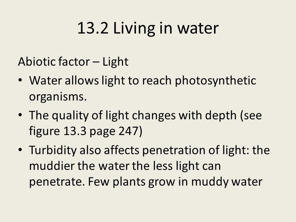 13.2 Living in water Abiotic factor – Light