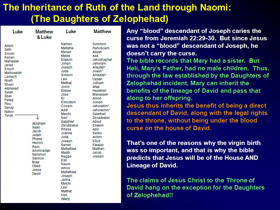 The Inheritance of Ruth of the Land through Naomi: (The Daughters of Zelophehad) Any blood descendant of Joseph caries the curse from Jeremiah 22:29-30.