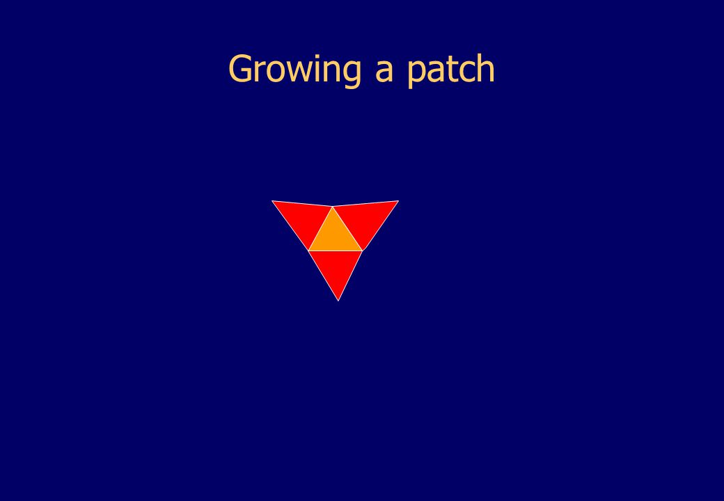 Growing a patch