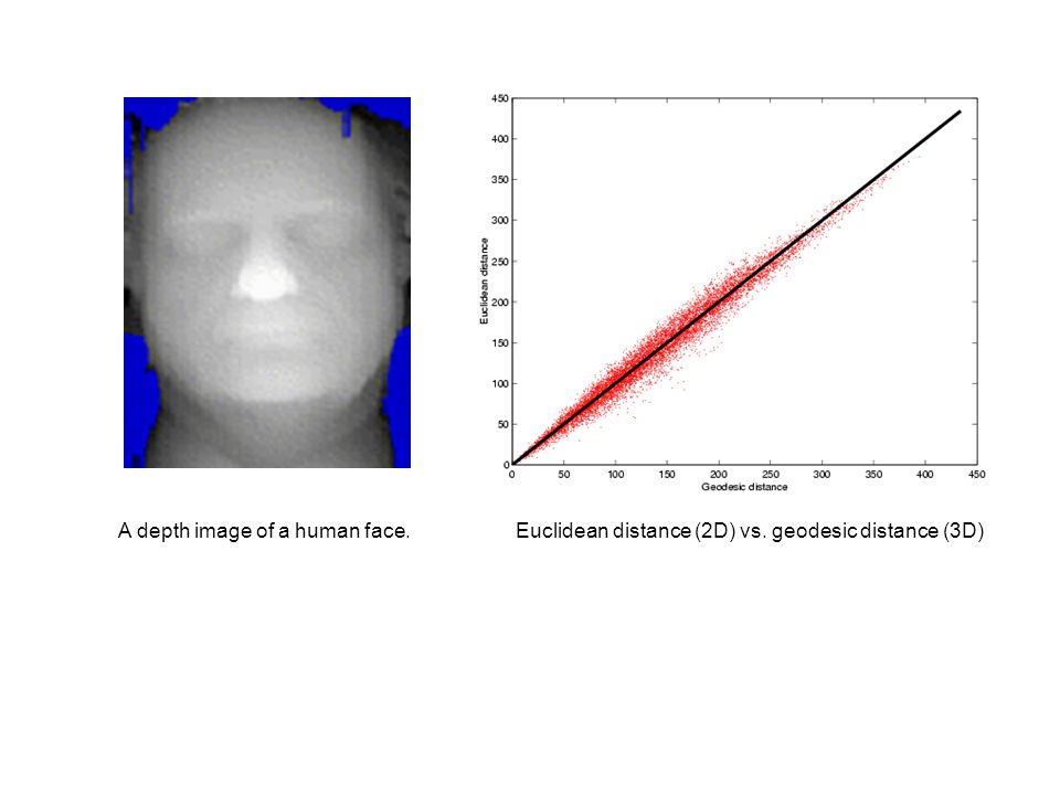A depth image of a human face.Euclidean distance (2D) vs. geodesic distance (3D)