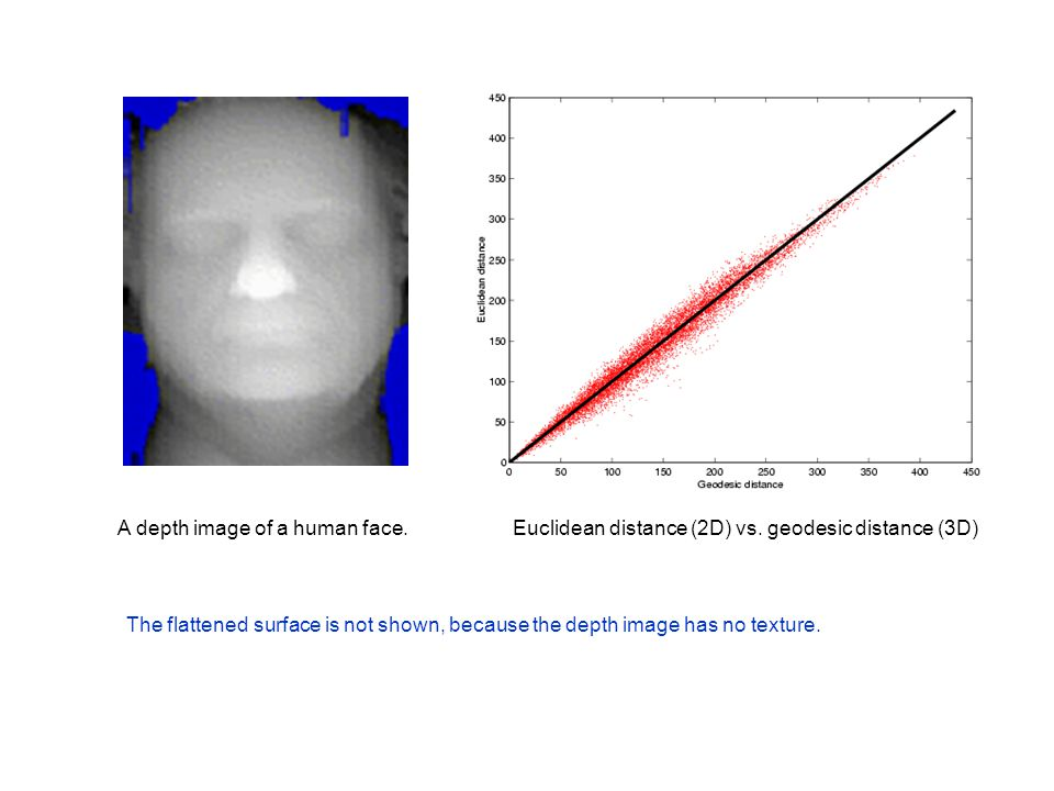 A depth image of a human face.Euclidean distance (2D) vs.