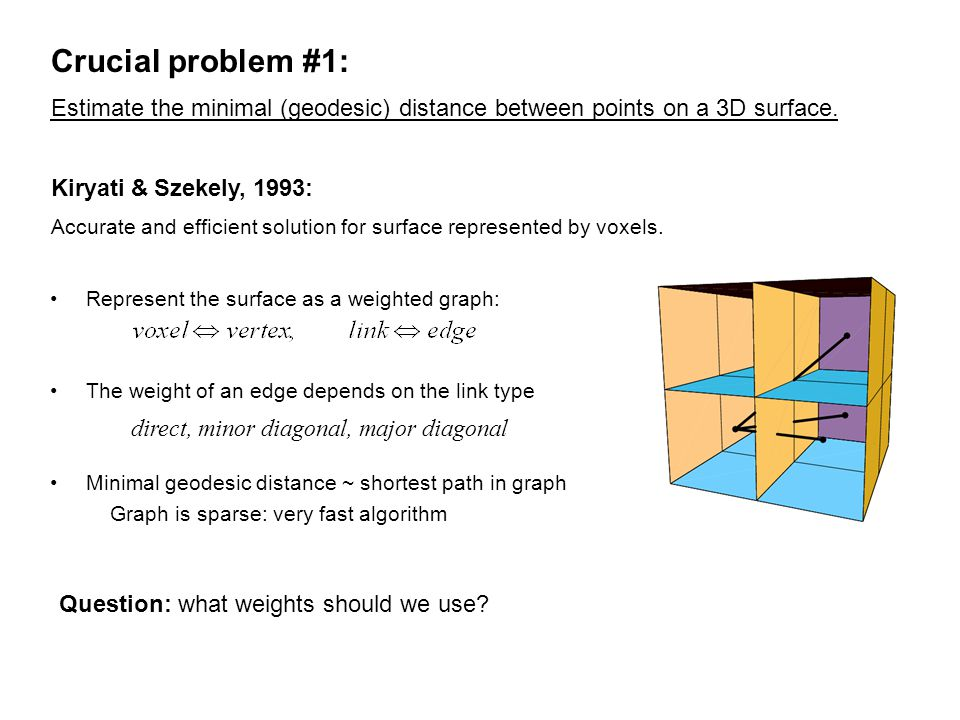 Crucial problem #1: Represent the surface as a weighted graph: The weight of an edge depends on the link type Minimal geodesic distance ~ shortest path in graph Graph is sparse: very fast algorithm Kiryati & Szekely, 1993: Estimate the minimal (geodesic) distance between points on a 3D surface.