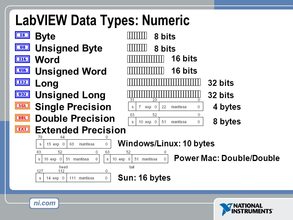 Byte Unsigned Byte Word Unsigned Word Long Unsigned Long Single Precision Double Precision Extended Precision 8 bits 16 bits 32 bits 8 bytes Sun: 16 bytes Windows/Linux: 10 bytes Power Mac: Double/Double 4 bytes LabVIEW Data Types: Numeric