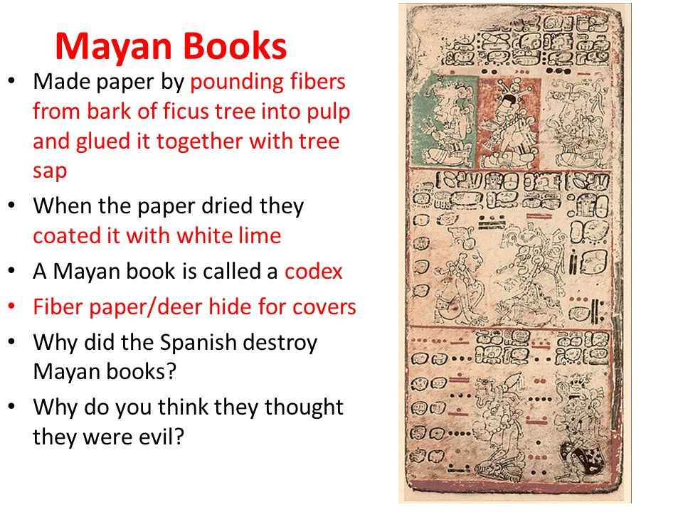 Mayan Books Made paper by pounding fibers from bark of ficus tree into pulp and glued it together with tree sap When the paper dried they coated it with white lime A Mayan book is called a codex Fiber paper/deer hide for covers Why did the Spanish destroy Mayan books.