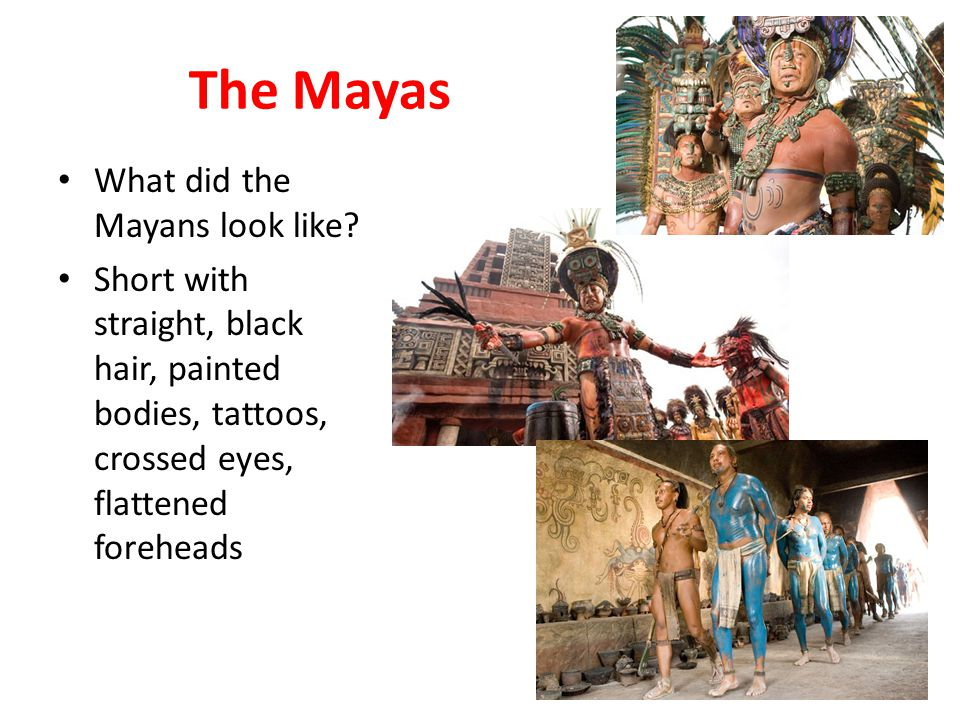 The Great Mystery of the Maya Around AD 850/900 the Mayas suddenly left their cities and were scattered throughout the countryside – Why?.