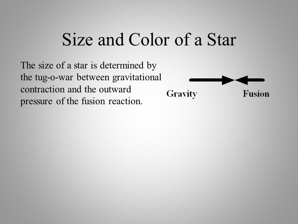Gravity & Fusion Gravity & Fusion determine the size of a star. Gravity pulls the star inward. Fusion pushes the star outward. The size of the star is