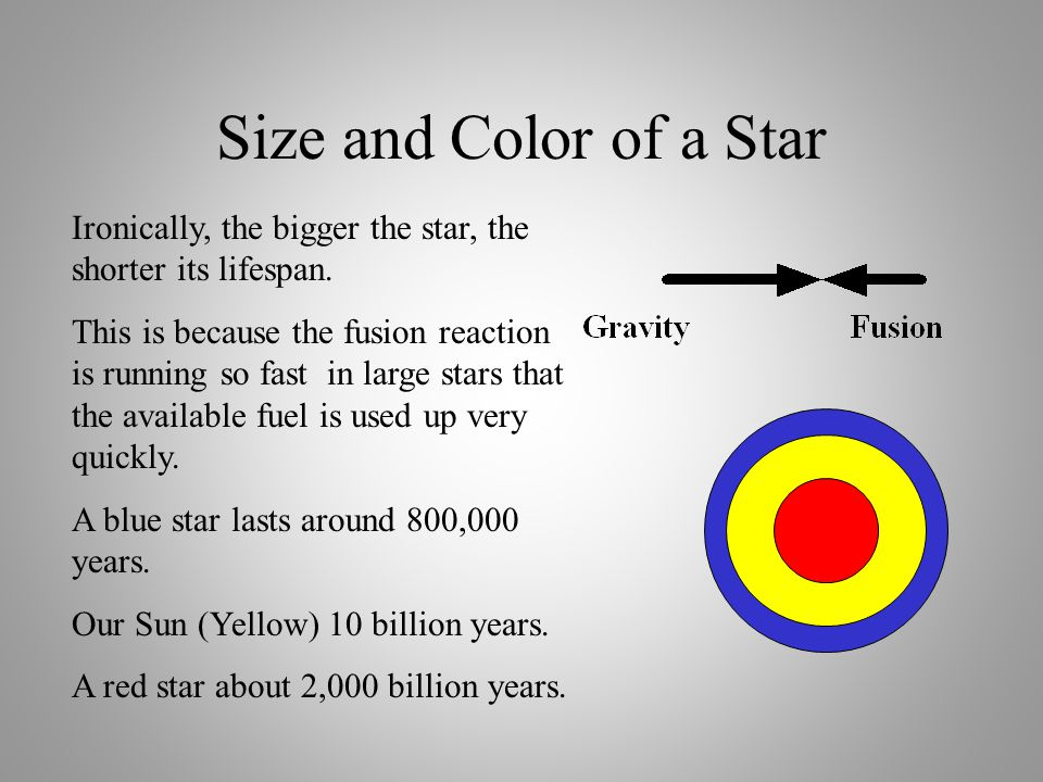 Size and Color of a Star The size of a star is determined by the tug-o-war between gravitational contraction and the outward pressure of the fusion re
