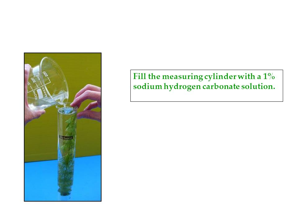 Fill the measuring cylinder with a 1% sodium hydrogen carbonate solution.