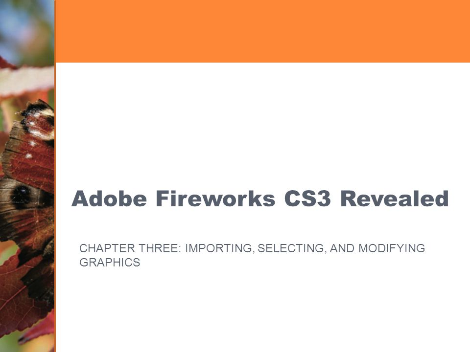 Adobe Fireworks CS3 Revealed CHAPTER THREE: IMPORTING, SELECTING, AND MODIFYING GRAPHICS