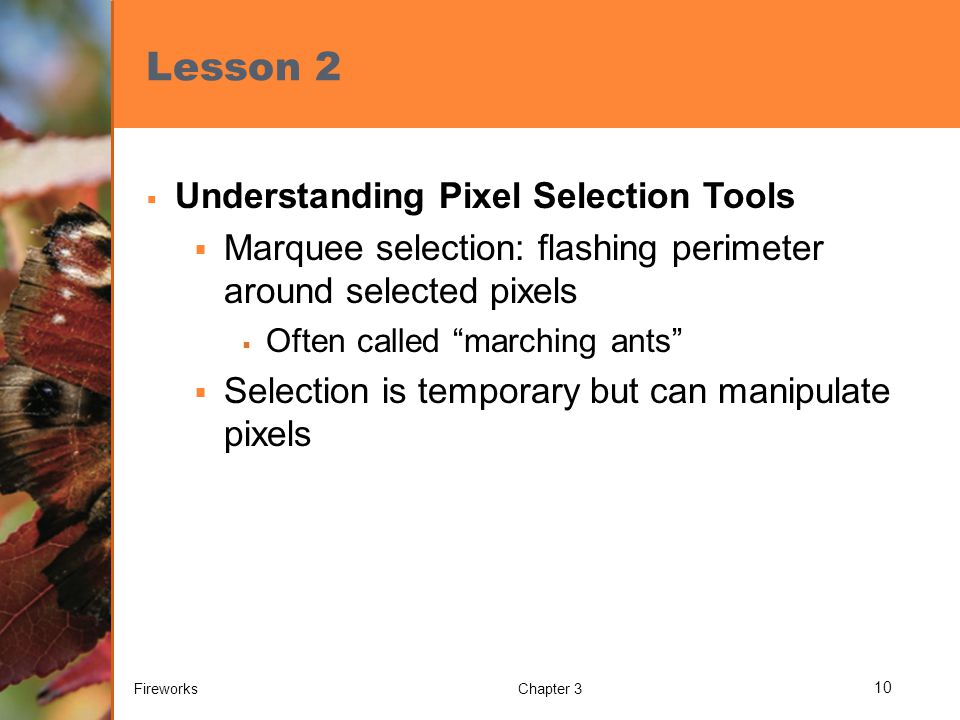 Lesson 2  Understanding Pixel Selection Tools  Marquee selection: flashing perimeter around selected pixels  Often called marching ants  Selection is temporary but can manipulate pixels FireworksChapter 3 10