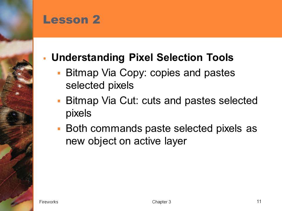 Lesson 2  Understanding Pixel Selection Tools  Bitmap Via Copy: copies and pastes selected pixels  Bitmap Via Cut: cuts and pastes selected pixels