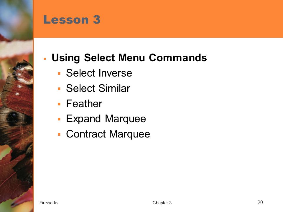 Lesson 3  Using Select Menu Commands  Select Inverse  Select Similar  Feather  Expand Marquee  Contract Marquee FireworksChapter 3 20