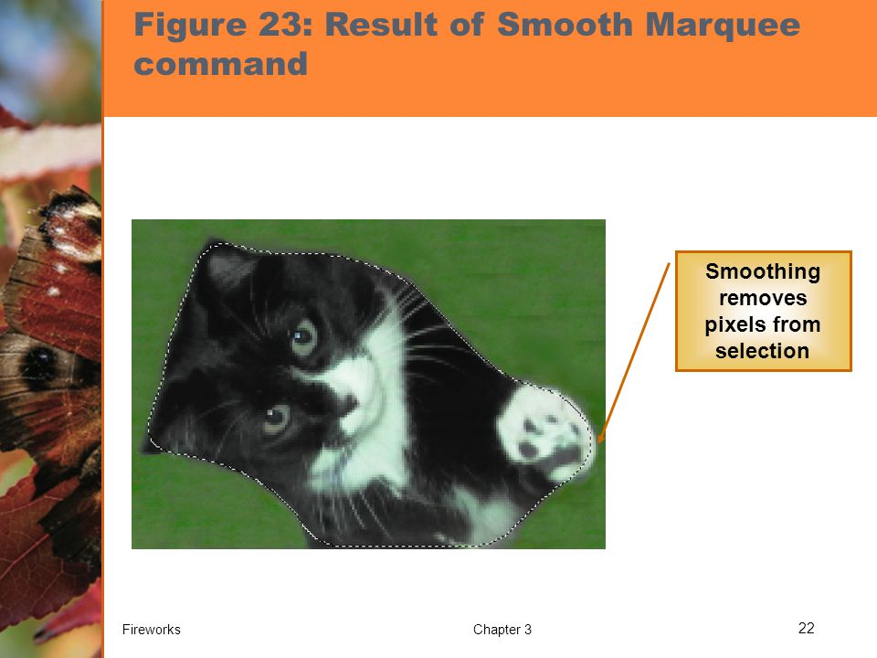 Figure 23: Result of Smooth Marquee command Smoothing removes pixels from selection FireworksChapter 3 22