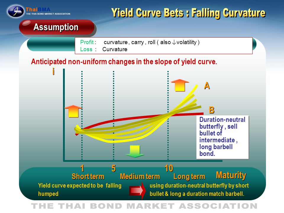 Investor expects the ThaiBMA yield curve will shift temporarily from normal shape to concave or humped shape.